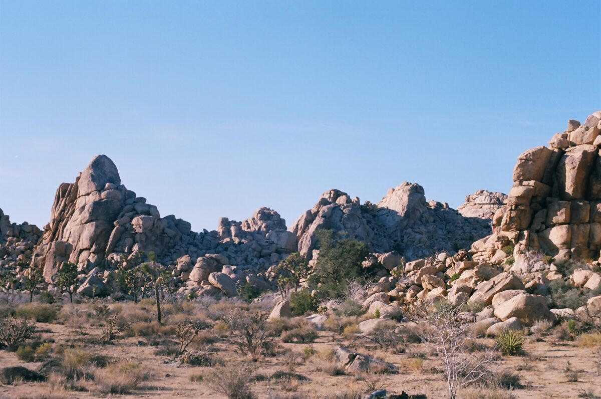 Baker Dam trail is an excellent hiking trial in Joshua Tree