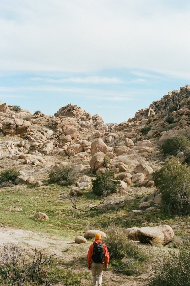 Best hiking trails in Joshua Tree California
