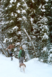 Best place to cross country ski in Colorado