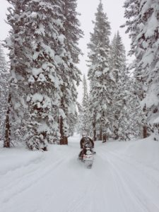 Epic winter sports options in Steamboat Springs Colorado includes snowmobiling