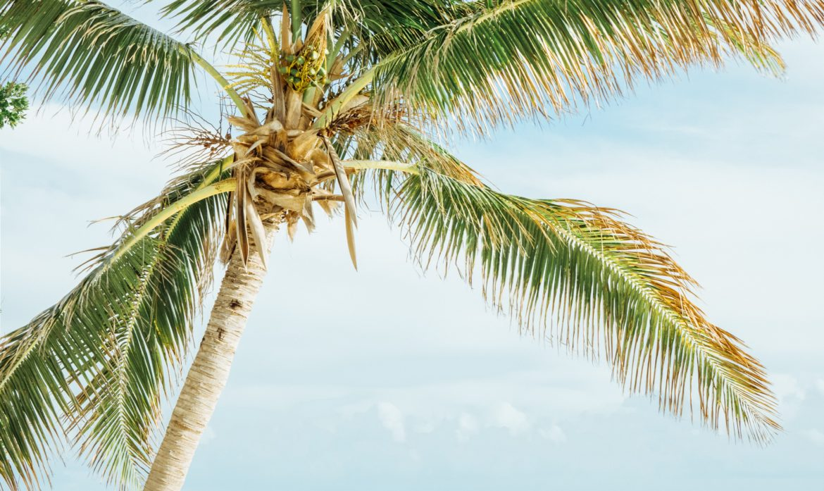 Spring Break Locations All RVers Should Aviod Now and Come Back When…