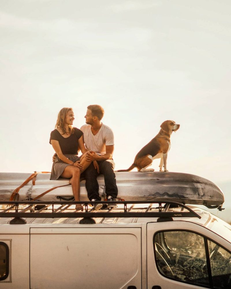 rving with pets, summer road trip with furry friends