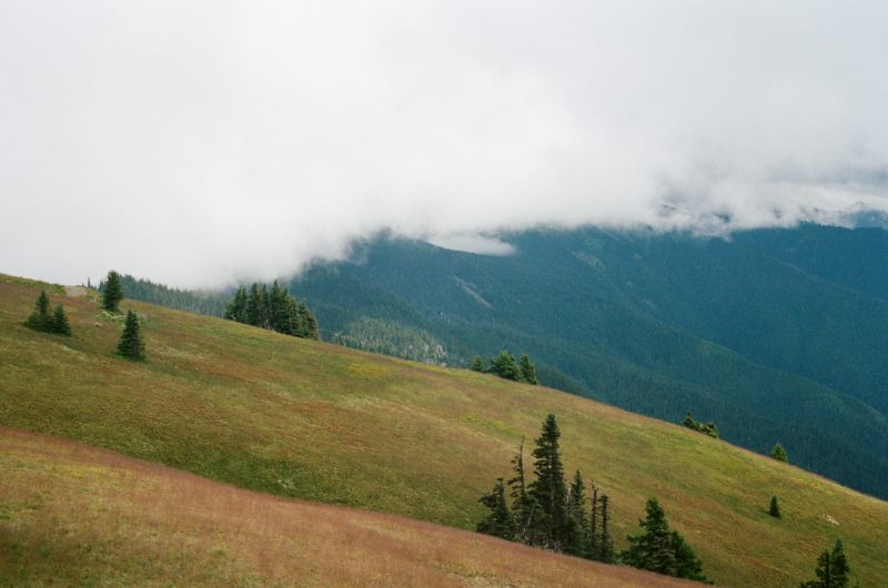 hurricane ridge, best hikes in Olympic National Park, RV friendly