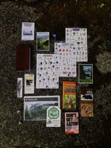 gear for hiking in a rainforest