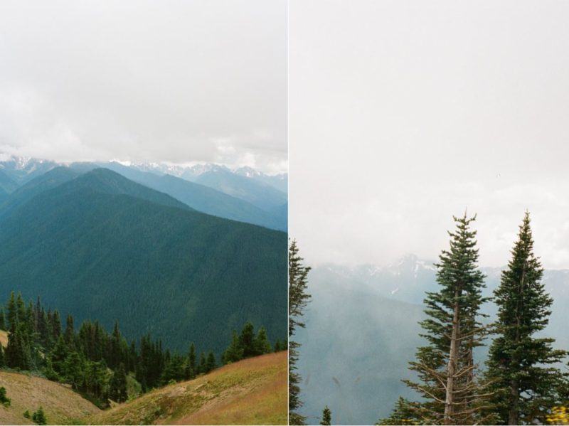hurricane ridge, prettiest drive in Olympic National Park