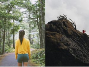 best features in Olympic National Park
