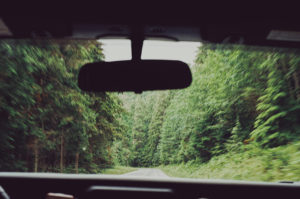 scenic drive from Seattle to Olympic National Park