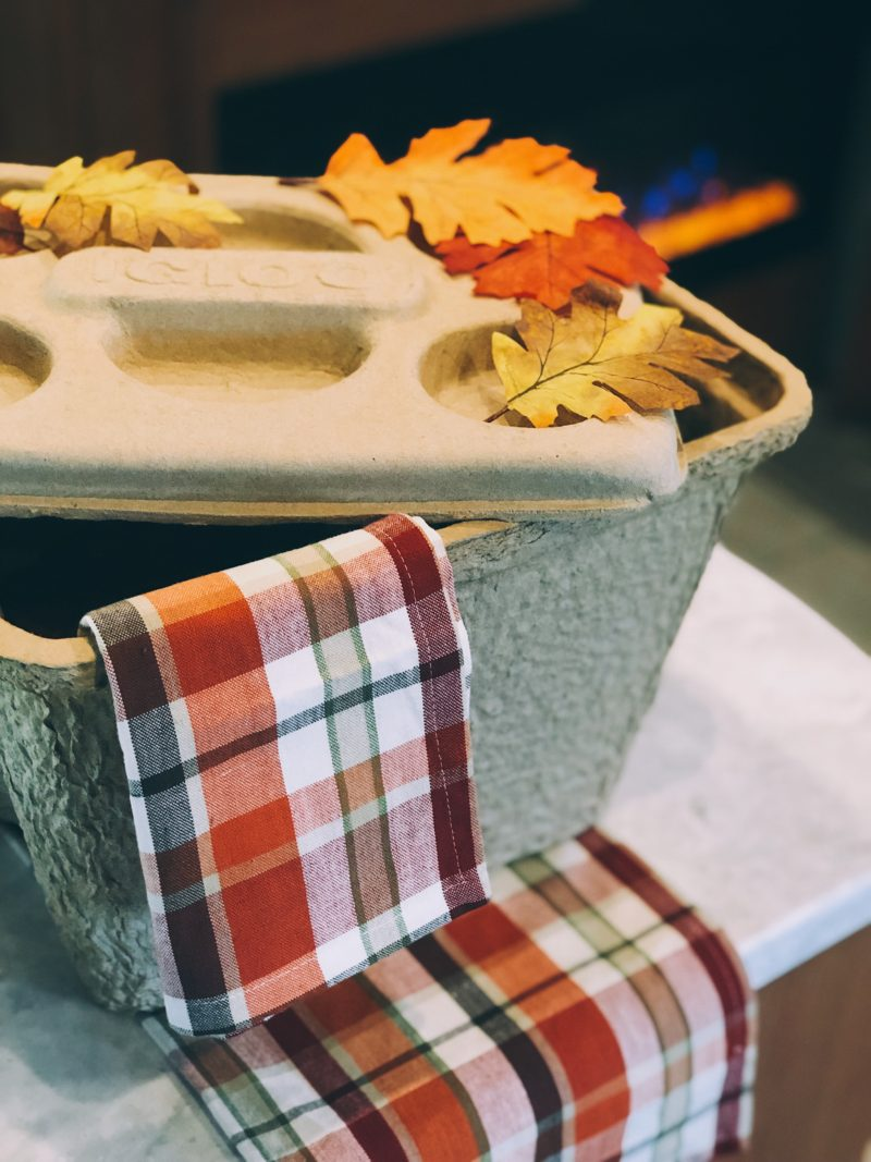 Igloo biodegradable coolers for thanksgiving